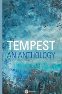 Discover Tempest – An Anthology, by Anna Vaught and Anna Johnson, Editors